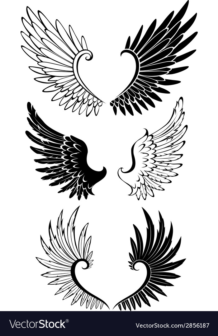 Set of wings for tattoo vector | Price: 1 Credit (USD $1)