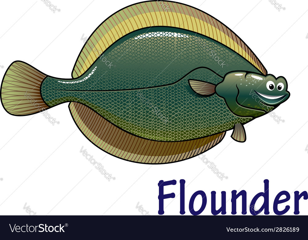 Flounder fish cartoon character vector | Price: 1 Credit (USD $1)