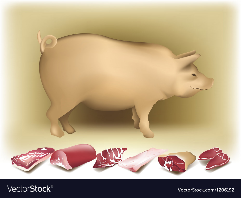 Pig and pork vector | Price: 3 Credit (USD $3)