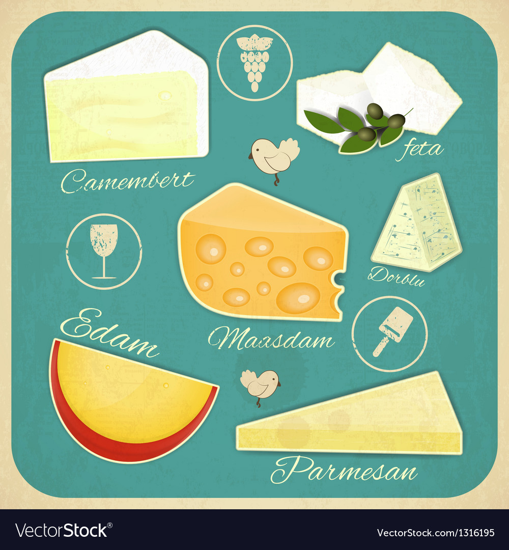 Vintage set of cheese vector | Price: 1 Credit (USD $1)