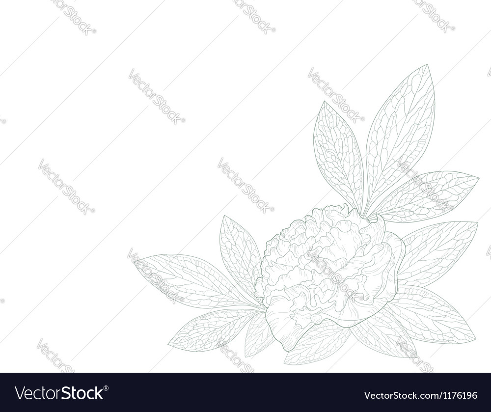 Card with a peony flower vector | Price: 1 Credit (USD $1)