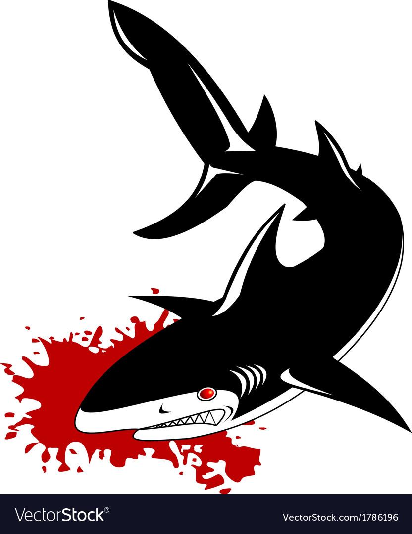Gray shark vector | Price: 1 Credit (USD $1)