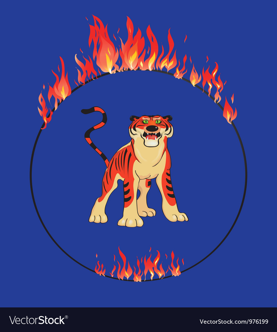 Tiger with flaming ring vector | Price: 1 Credit (USD $1)