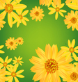Seamless flower leaves pattern background vector