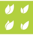 Leaf pair icon on both solid vector