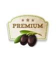 Olive kitchen badge vector