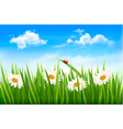 Three spring banners with blossoming tree brunch vector