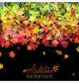 Colourful autumn background vector