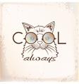 Funny muzzle cat in sunglasses closeup vector