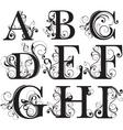 Script capitals vector