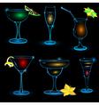 Neon cocktail icon set vector