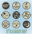 Its a baby boy labels and icons vector