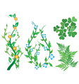 Set of green decorative plants with flowers vector