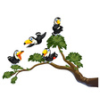 Toucan and tree vector
