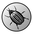 Bug button vector