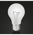 Bulb isolated on black vector