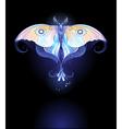 Moonlight butterfly vector