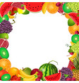 Frame template of fruit for you design vector