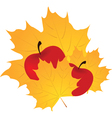 Autumn leaf and apple vector