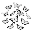 Black and white butterflies vector