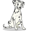 Dalmatian purebred dog cartoon vector
