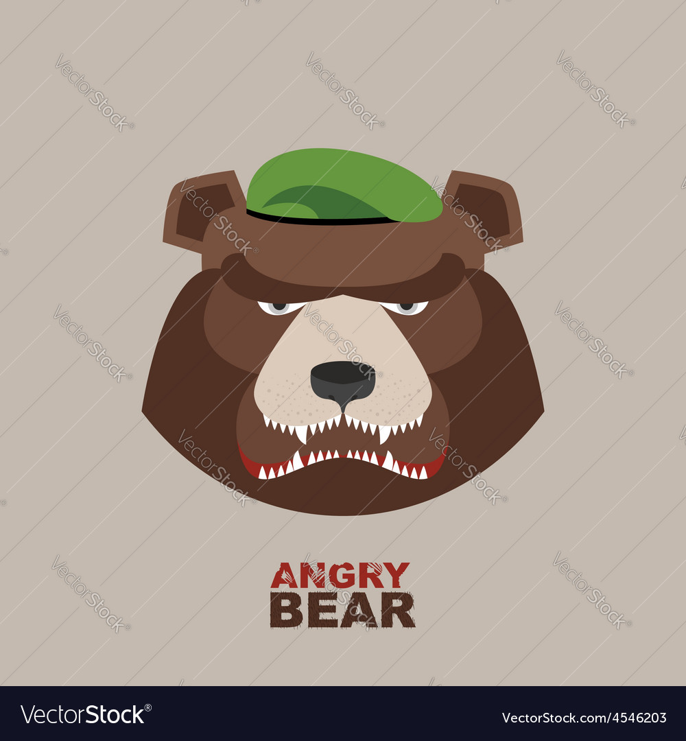Bear soldier in a green beret angry animal vector | Price: 1 Credit (USD $1)