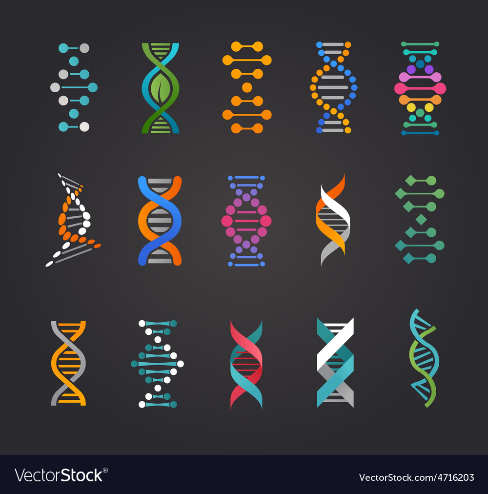 Dna genetic elements and icons collection vector   Price: 1 Credit (USD $1)