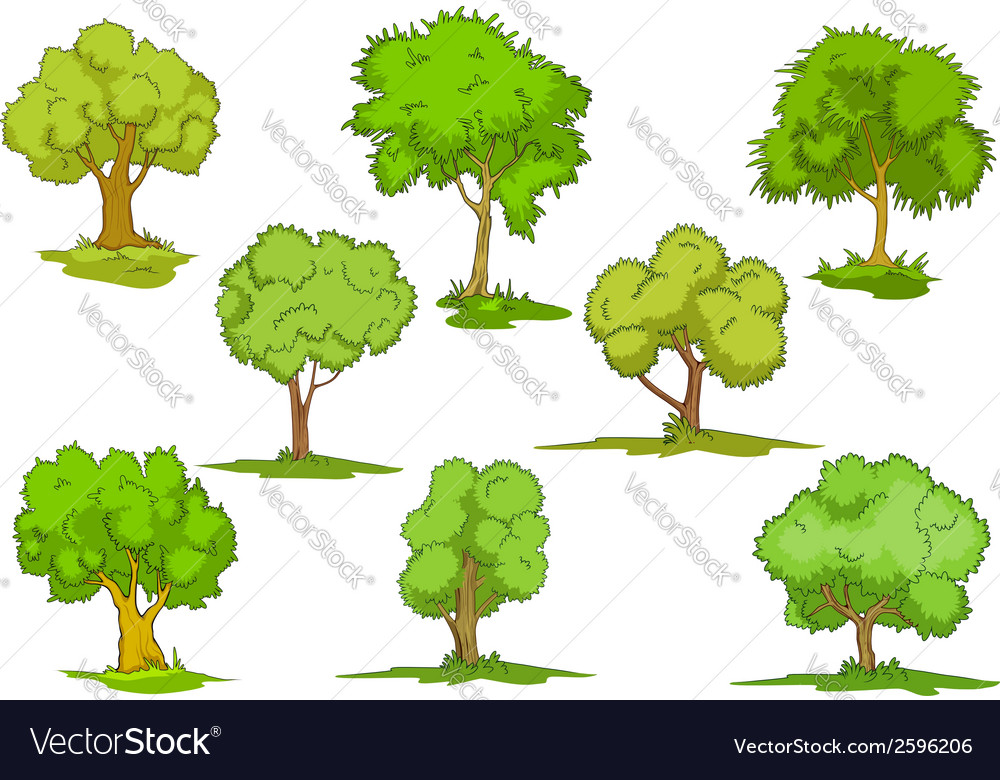 Set of leafy green trees vector   Price: 1 Credit (USD $1)