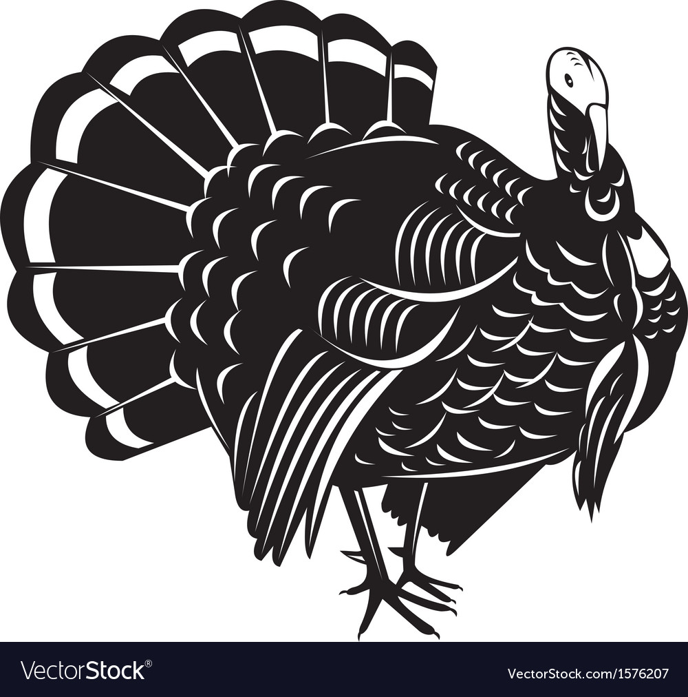 Wild turkey retro vector | Price: 1 Credit (USD $1)