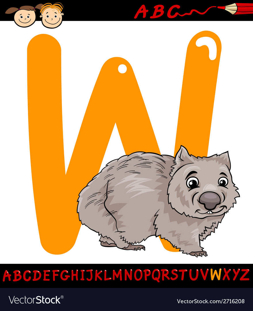 Letter w for wombat cartoon vector | Price: 1 Credit (USD $1)