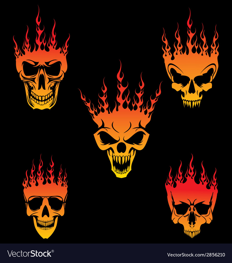 5 burning skulls vector | Price: 1 Credit (USD $1)