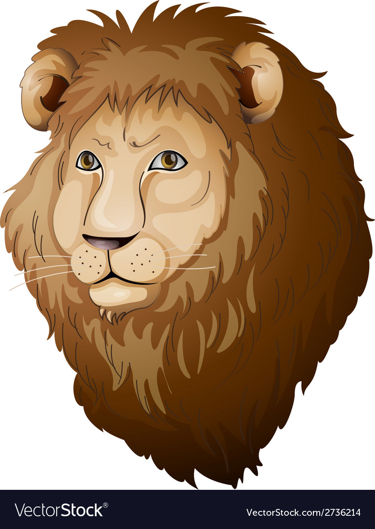 Lion face vector | Price: 1 Credit (USD $1)