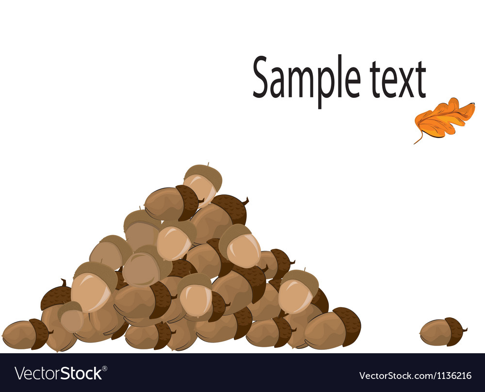 Pile of acorns vector | Price: 1 Credit (USD $1)