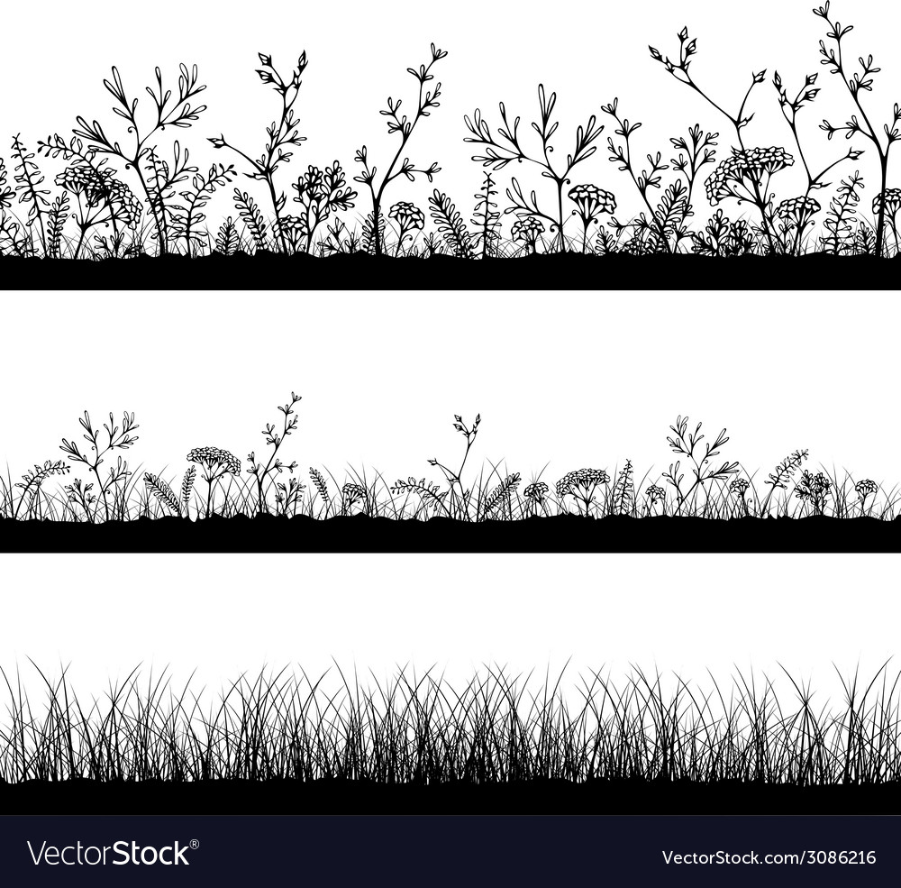 Wild herbs and flowers silhouettes vector | Price: 1 Credit (USD $1)