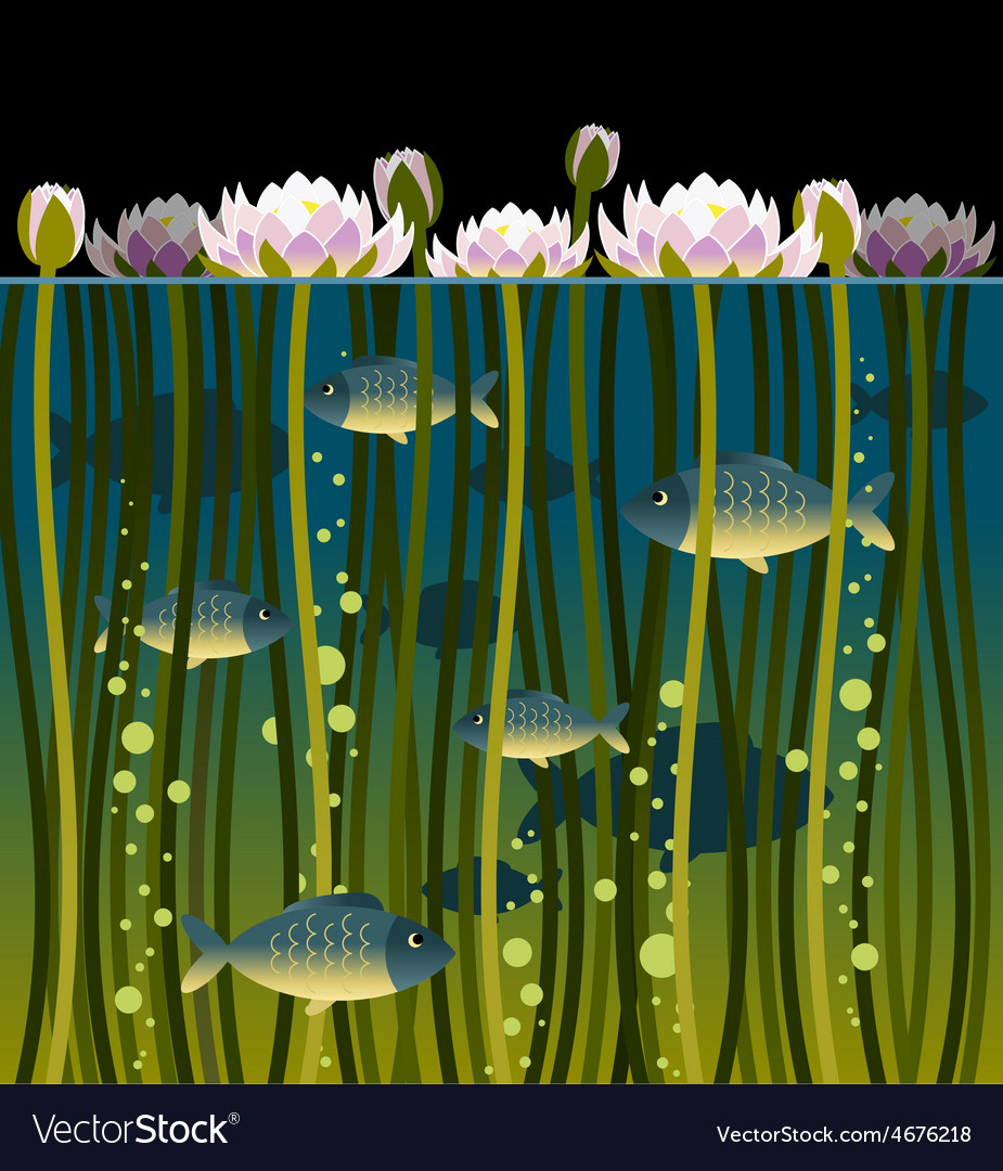 Water lilly and the fish vector | Price: 3 Credit (USD $3)