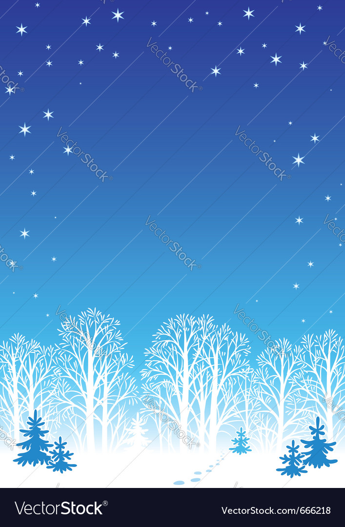 Winter night background eps8 vector | Price: 1 Credit (USD $1)