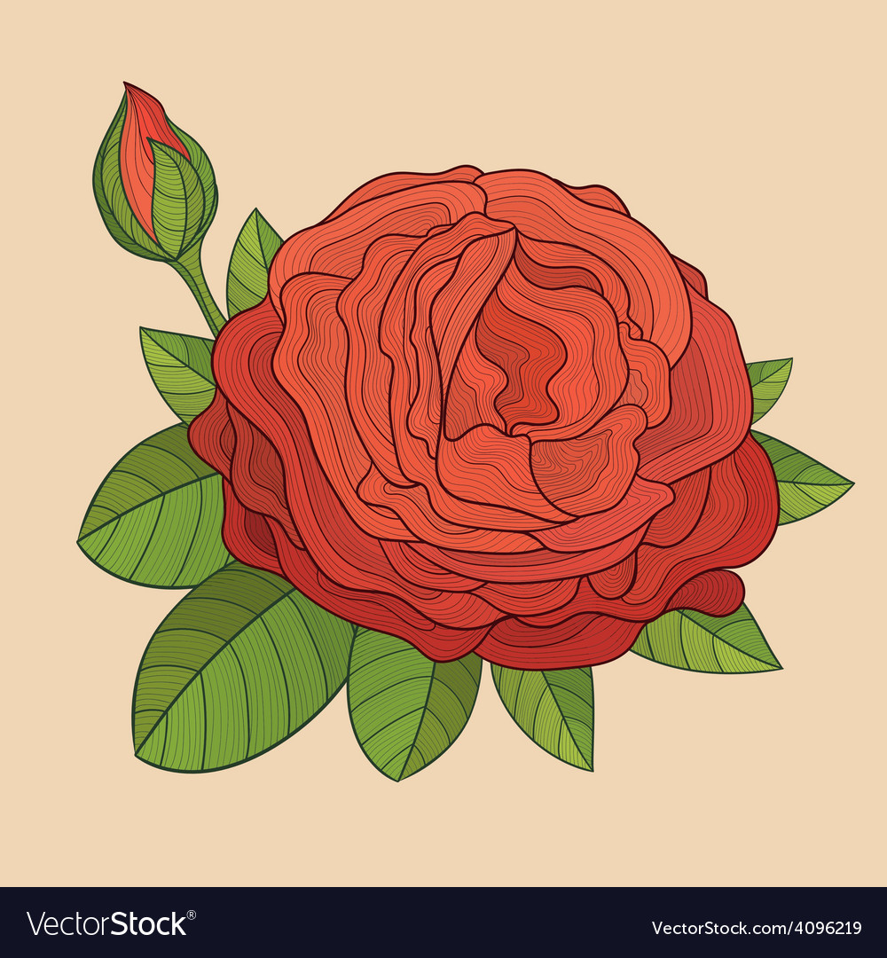 Decorative isolated rose with bud vector | Price: 1 Credit (USD $1)