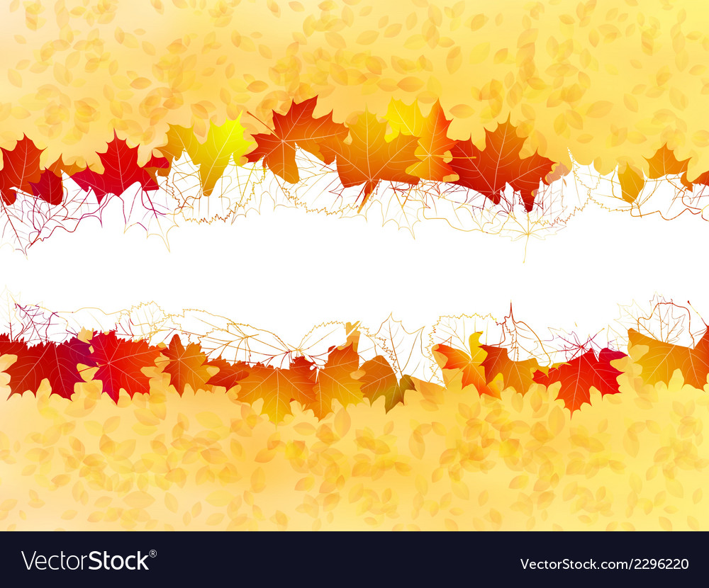Autumn leaves background plus eps10 vector | Price: 1 Credit (USD $1)