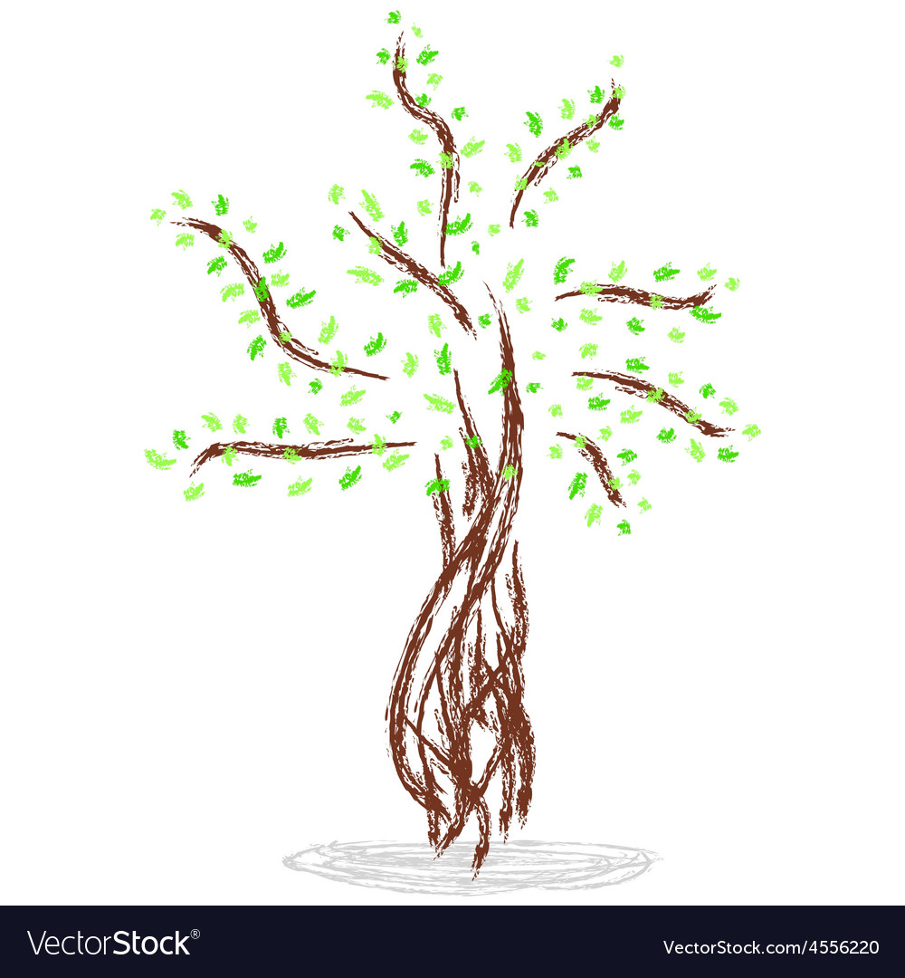 Isolated of tree vector | Price: 1 Credit (USD $1)