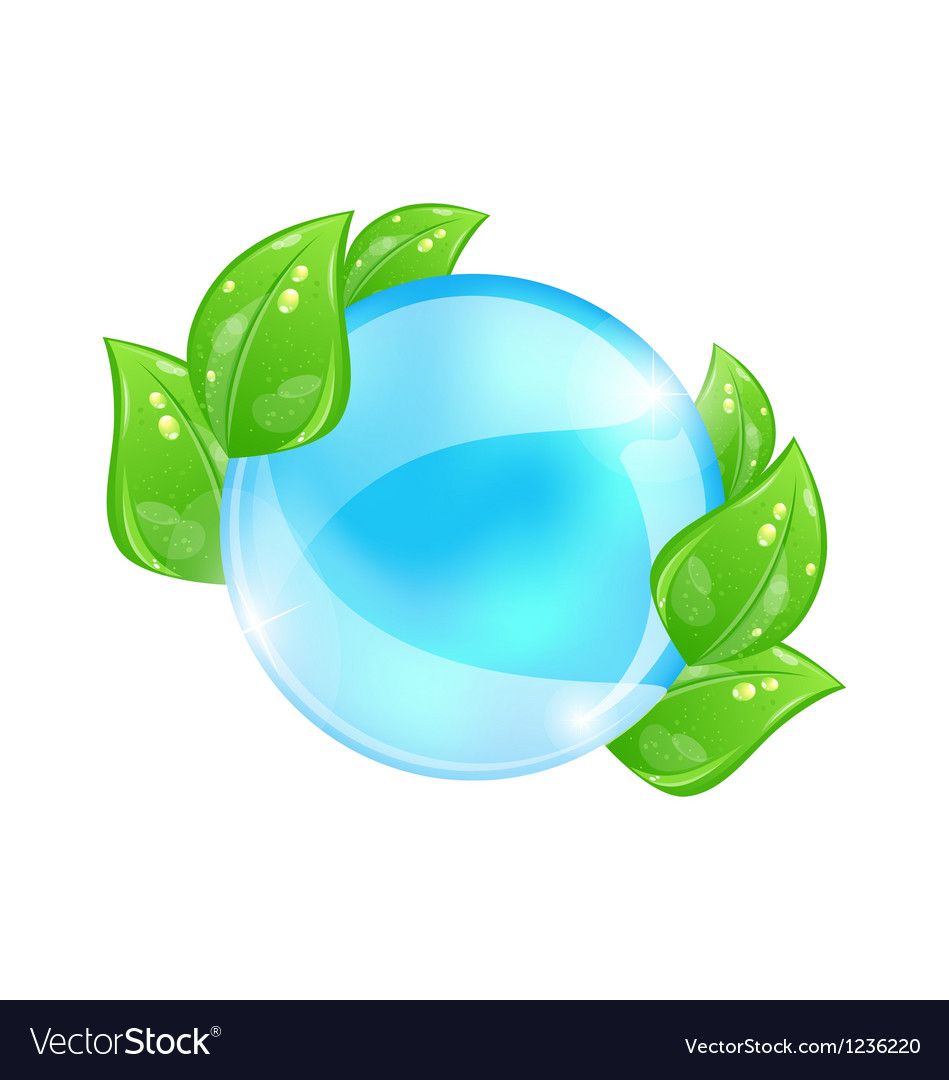 Water bubble with eco green leaves vector | Price: 1 Credit (USD $1)