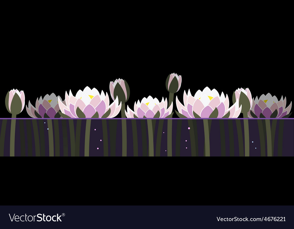 Water lilly and bubbles vector | Price: 1 Credit (USD $1)