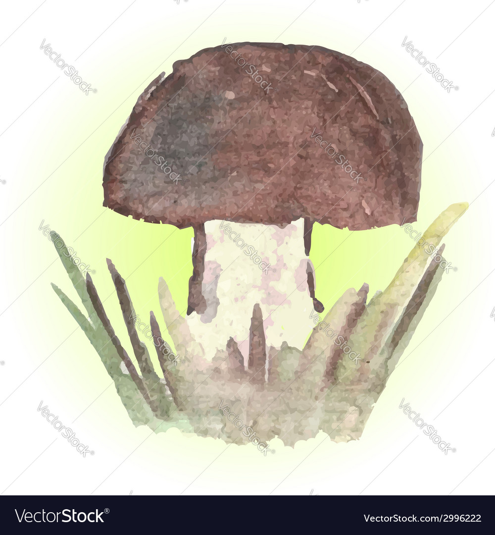 1756mushroom vector | Price: 1 Credit (USD $1)