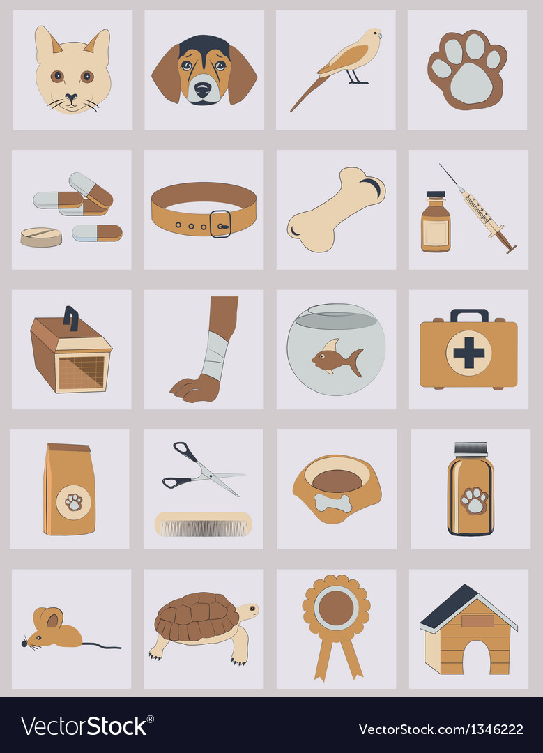 Set of veterinary icons vector | Price: 1 Credit (USD $1)