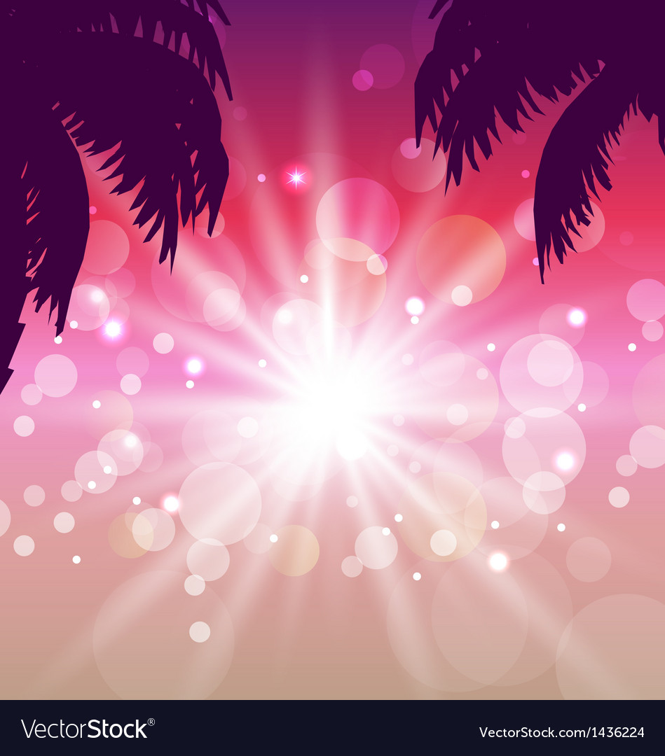 Postcard with seaside sunset view with palmtree vector