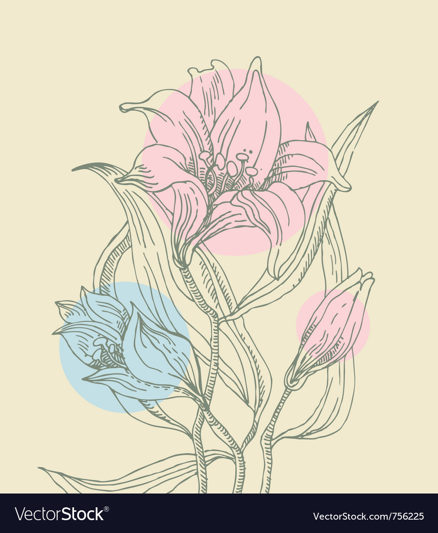 Floral background with lilies vector   Price: 1 Credit (USD $1)