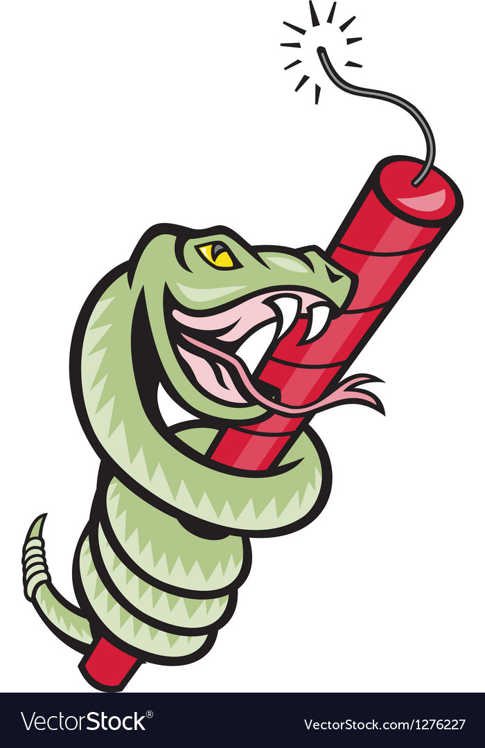 Snake rattle dynamite eps10 vector | Price: 1 Credit (USD $1)