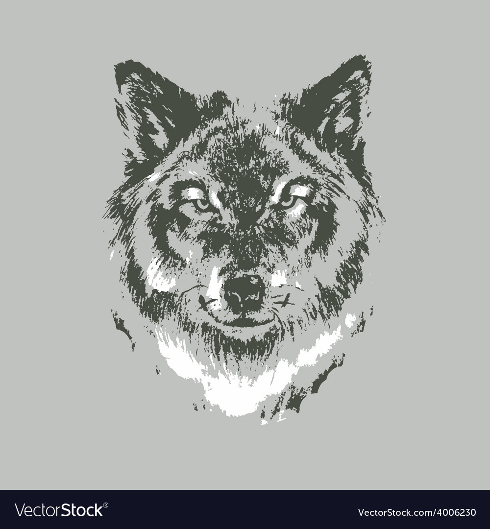 Hand drawn wolf sketch vector | Price: 1 Credit (USD $1)