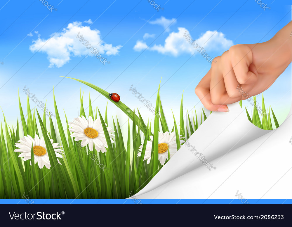 Spring background with sky flowers grass and a vector | Price: 1 Credit (USD $1)