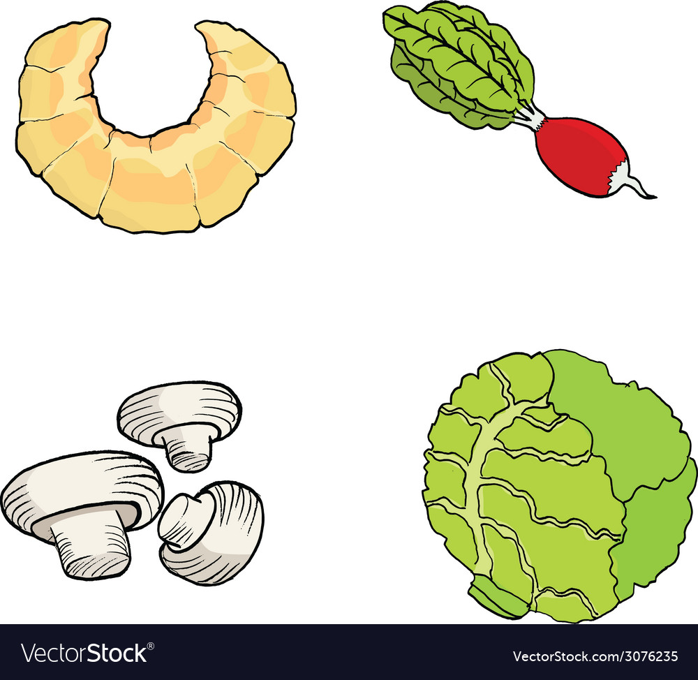 Croissantradishchampignonscabbage hand drawn of a vector | Price: 1 Credit (USD $1)