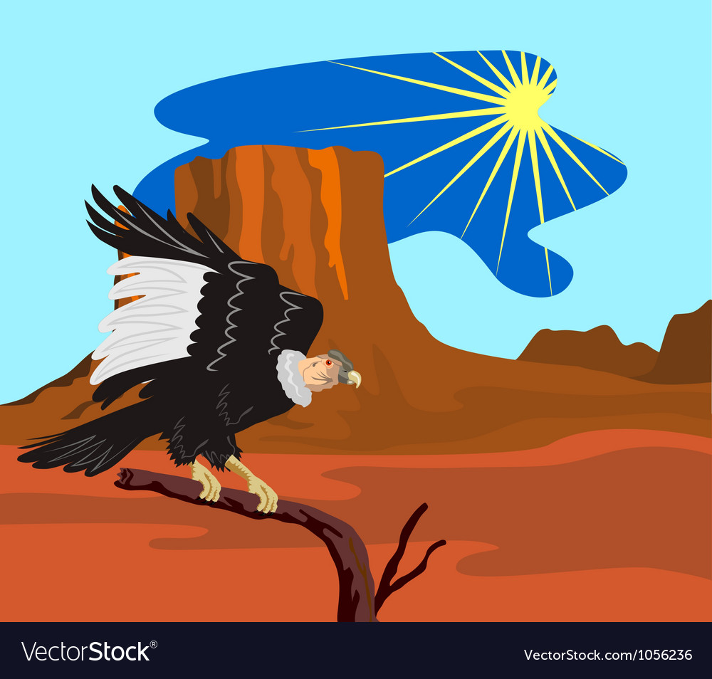 Vulture buzzard bird vector | Price: 1 Credit (USD $1)